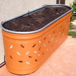 Thinking Outside the Box! Re-Purposing Stock Tanks as Raised Garden Beds