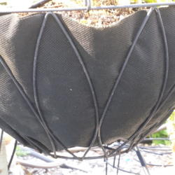 Alternative to Coir Basket Liners