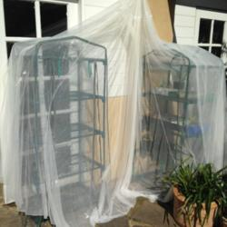 Mosquito Net as a Shadecloth
