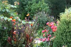 Thumb of 2015-08-08/Calif_Sue/f37d03