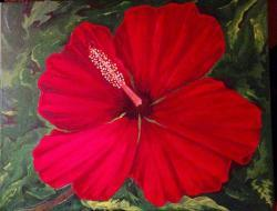 Thumb of 2015-10-11/Sharon/398a53
