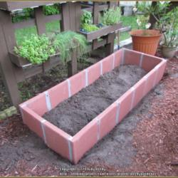More Concrete Hardscaping for the Garden