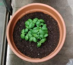 Thumb of 2016-04-05/Gabe1982/de0e43