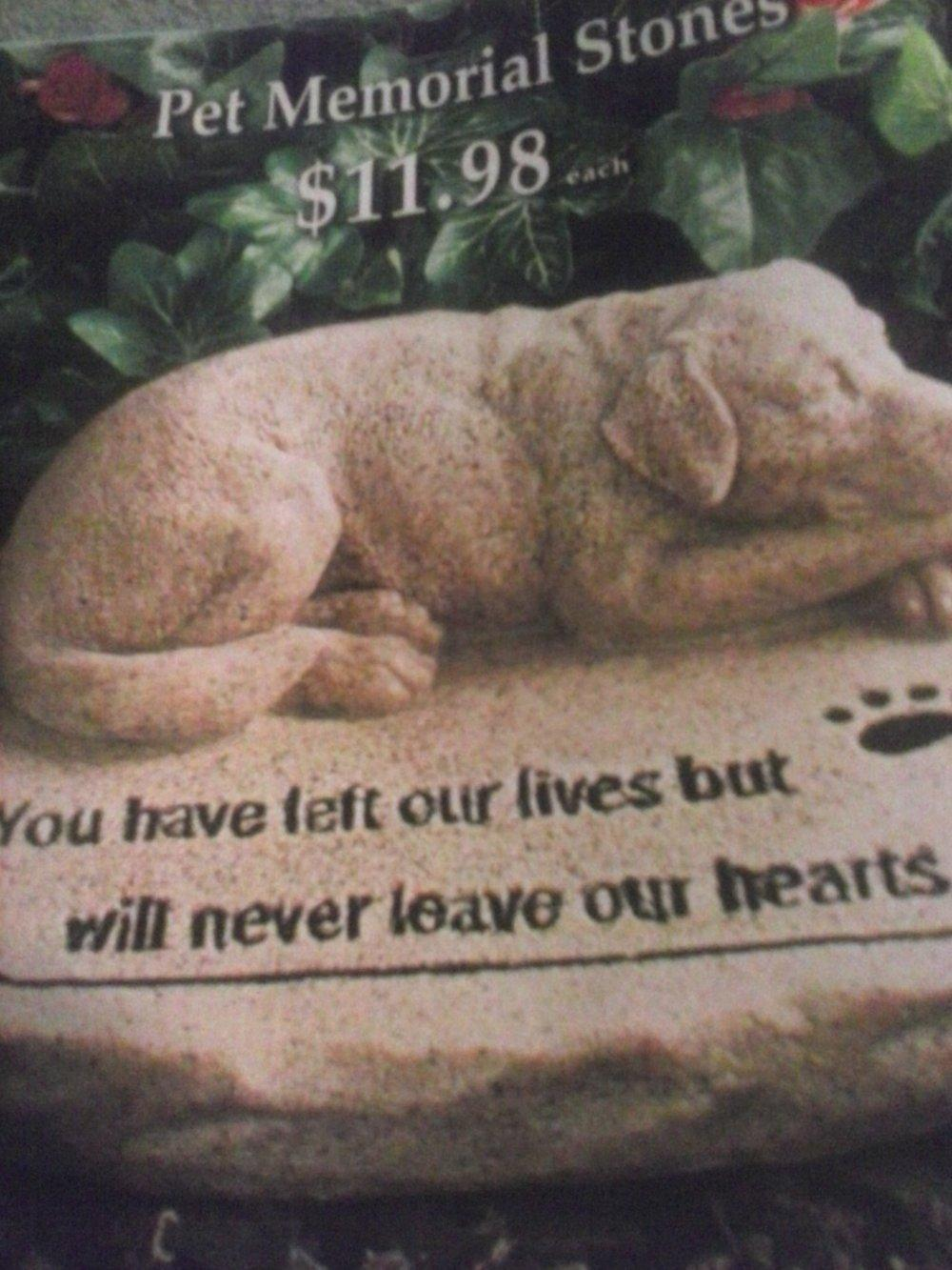 Ask a Question forum: Ideas on flowers to plant on dog\'s grave ...