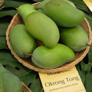 Mango Mangifera Indica Okrung Tong In The Mangoes Database