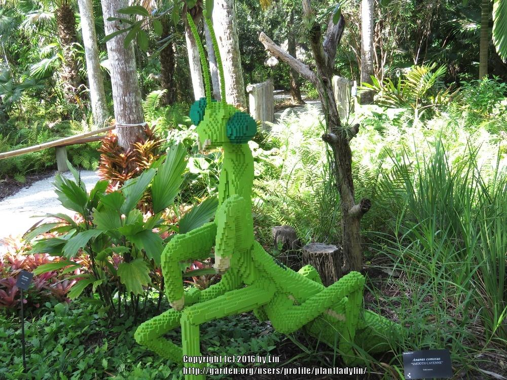 Florida Gardening Forum Lego Garden Sculptures At Mckee