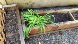 Thumb of 2017-05-22/Brinybay/896861