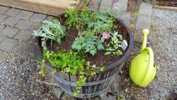 Thumb of 2017-05-22/Brinybay/cea5ad