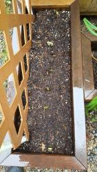 Thumb of 2017-06-08/Brinybay/d83838