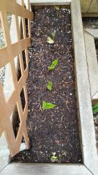 Thumb of 2017-06-12/Brinybay/f5404a