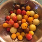 Date: 2017-09-08Cherry Tomato Mix: Black Cherry, Fruit Punch, Super Sno