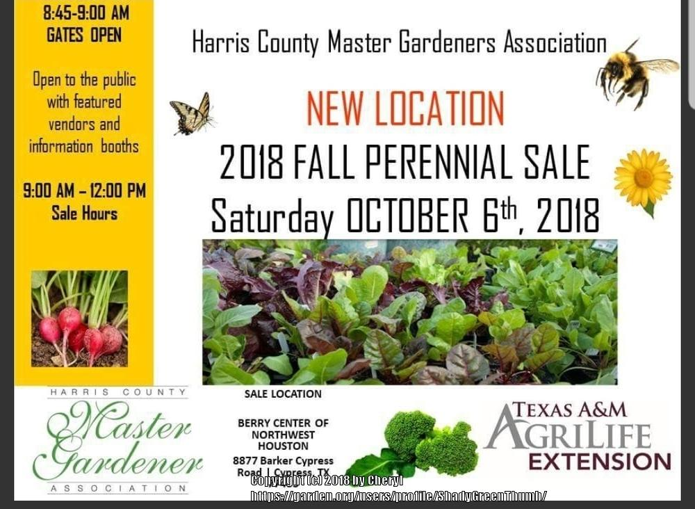 Texas Gardening Forum Harris County Houston Master Gardener Fall Perennial Sale