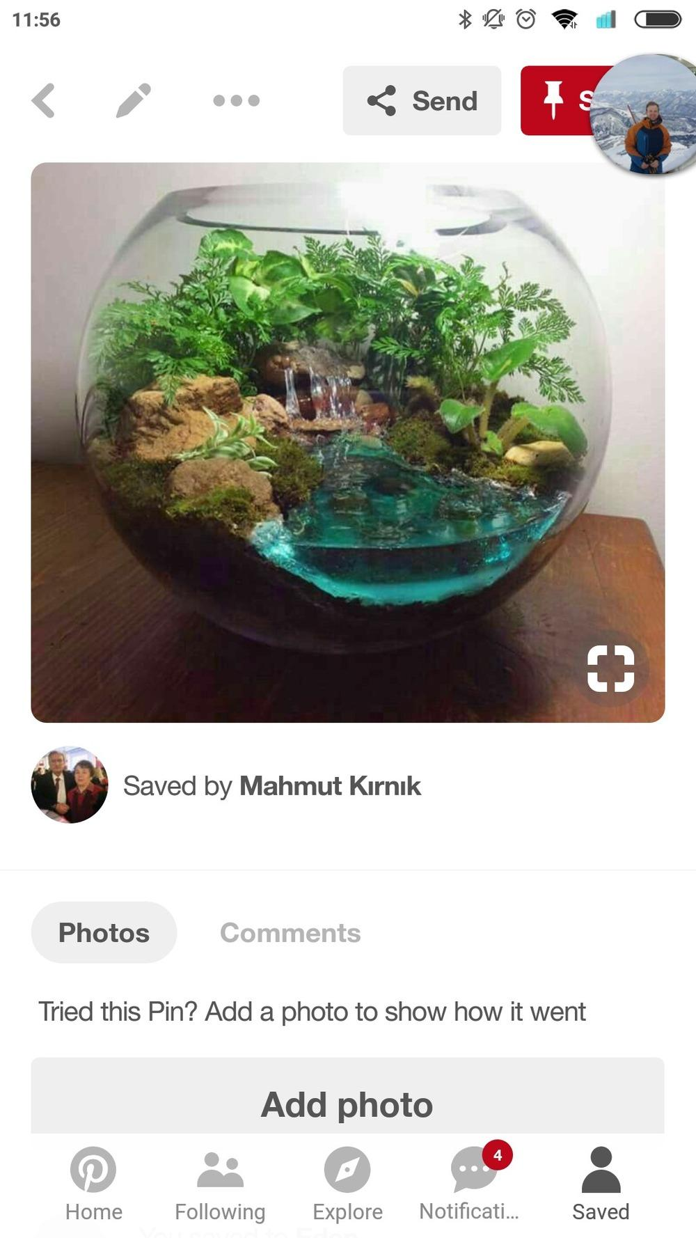 Ask A Question Forum Terrarium And Creating Fake Ponds Garden Org