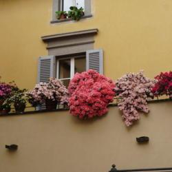 Photo by AlexUnder