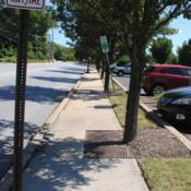 Location: Downingtown, PennsylvaniaDate: 2019-08-29line of trees between sidewalk and parking lot