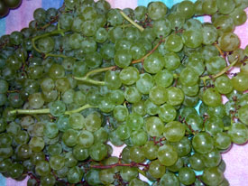 himrod_grapes.jpg